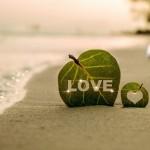 離婚家系の連鎖を断ち切る方法