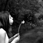 感情受容 ハッピーに生きるための感情コントロール