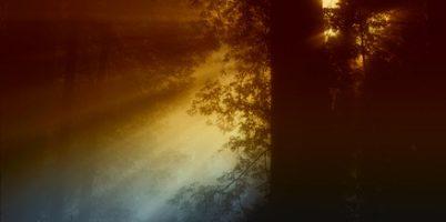 スピリチュアルな目覚めを促進させる方法